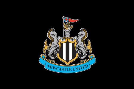 Unclarity Occurred With the Sale of the Newcastle Club